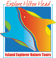 Island Explorer Dolphin and Nature Tours